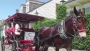 Royal Carriages New Orleans Coupon Code - Save 10%